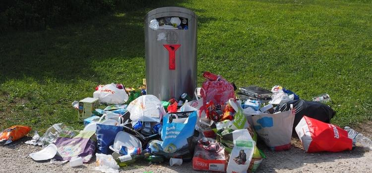 Workshop: Weg mit dem Müll! – für ein lebenswertes Ostmannturmviertel